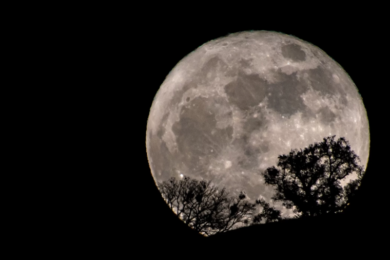 March 31, 2018 Blue Moon captured by Frank Langben of San Jose CA.